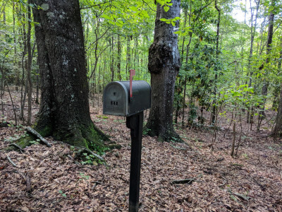 Mystical Mailbox  Treasure Hunt