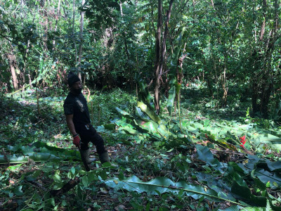 Help Mizpeh Halfway House Cultivate Lives Through Cultivating Land