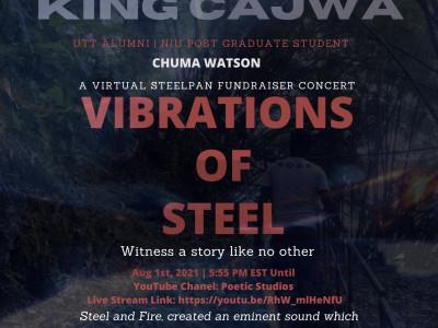 Vibrations of Steel